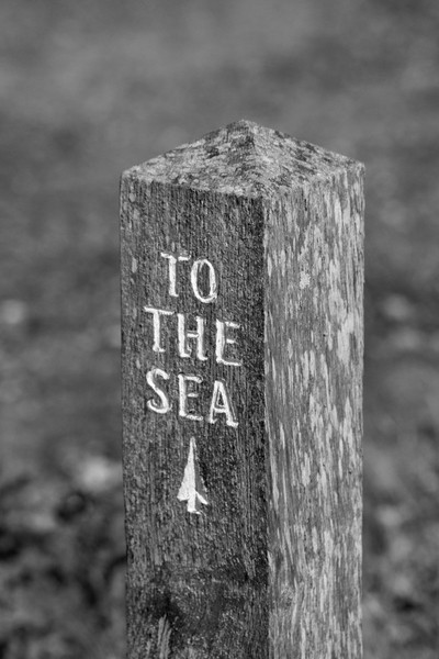 To the sea signpost