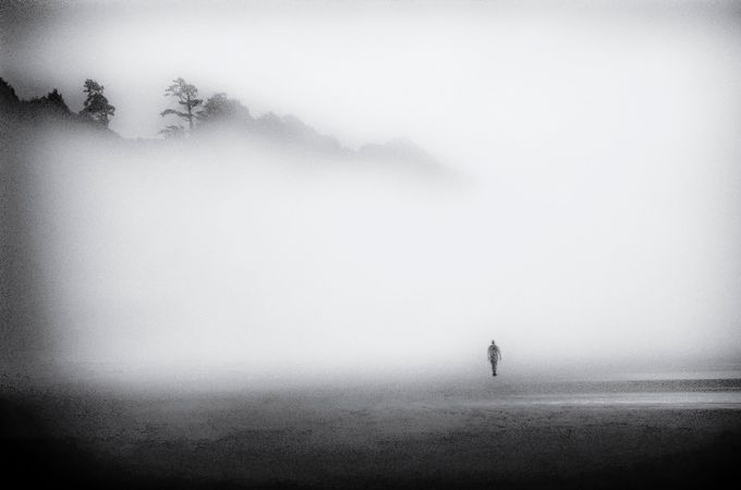 Solitary Man by GayleLucci - A Walk In The Mist Photo Contest