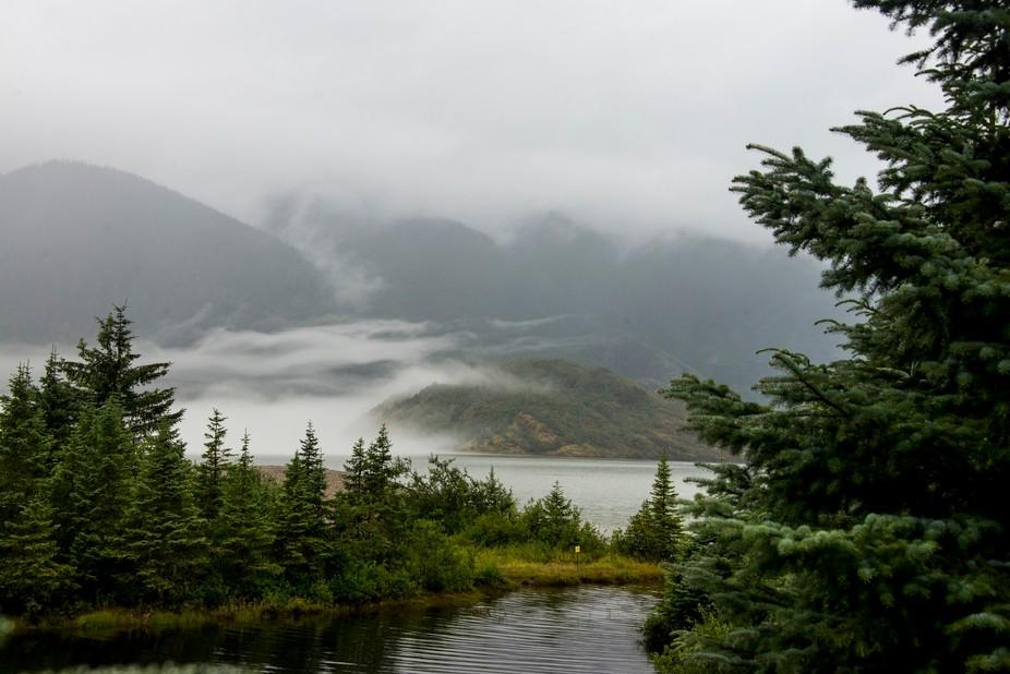 Foggy morning at Mendenhall Lake