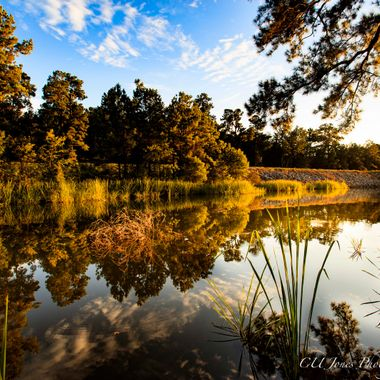 Lake Moultrie located in Moncks Corner, South Carolina. This is from a small boat landing.