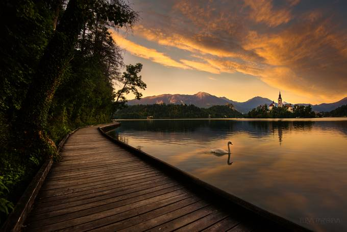 Walkway to Heaven by ElenaParaskeva - Boardwalks Photo Contest