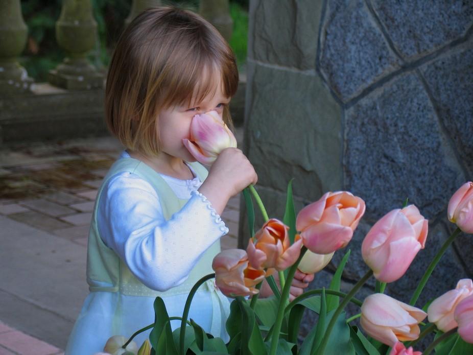 tulip-girl