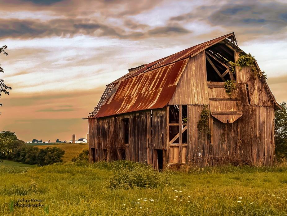Golden Light on the Prairie