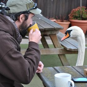 My local Swan and myself.