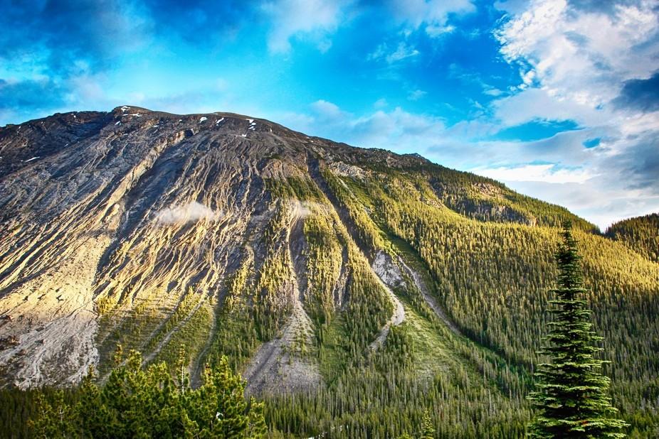 Jasper National