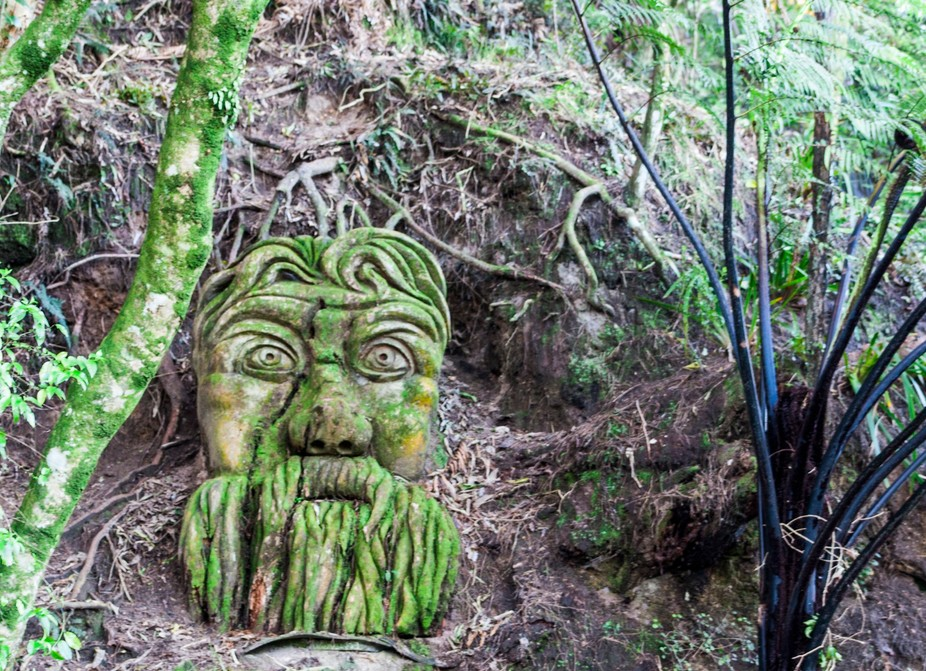 This is a carving from a tree trunk.