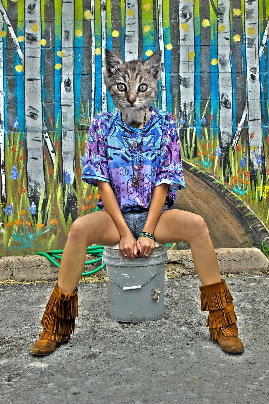 This turned out pretty cool my friend was happy that I could turn her into a kitten, as well as other big cats...the only problem I had with this one was the necklace was being difficult but its a minor detail. I did not take the picture of the kitten, this was for my first project in my Photoshop 2 class