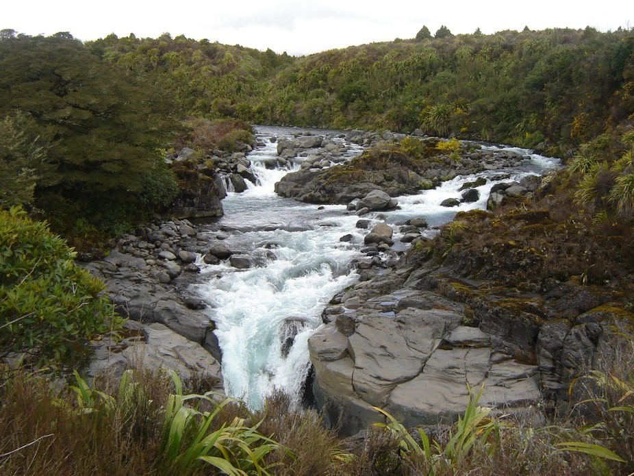 This was another stream located nearby, also at National Park, North Island, New Zealand. This st...