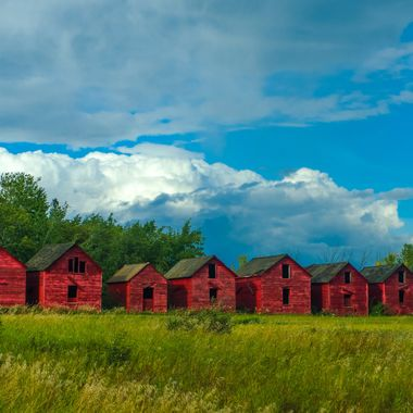 Rows of old grain shed from Alberta Canada.