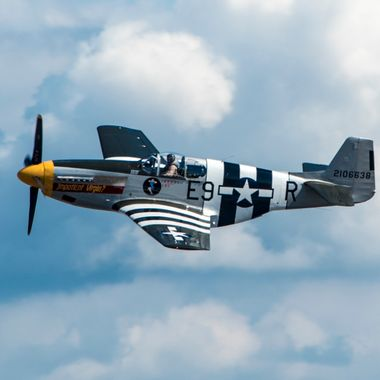 WW II Mustang