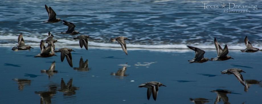 Taken at Ocean Isle, North Carolina