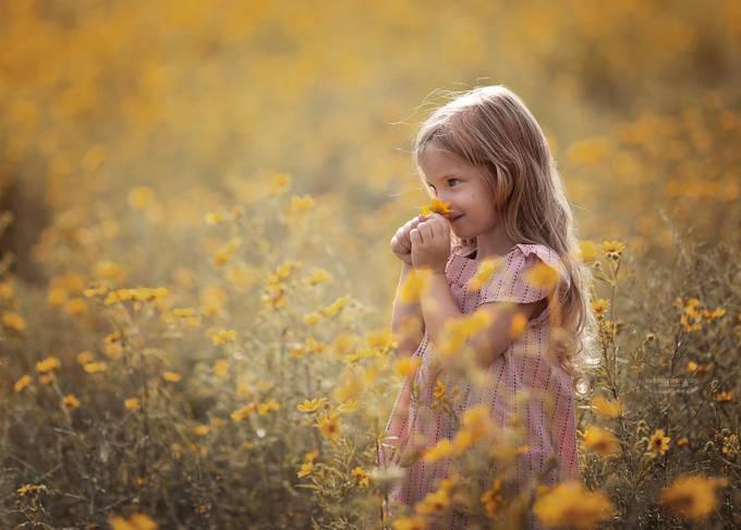 Bliss  by AnnieWhitehead - Shallow Depth Of Field Photo Contest