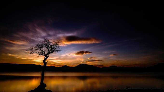 Loch Lomond Sunset by JoePorterPhotography - Silhouettes Of Trees Photo Contest