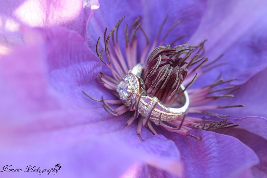 Said 'yes'! Love clematis flowers so took advantage of the setting.