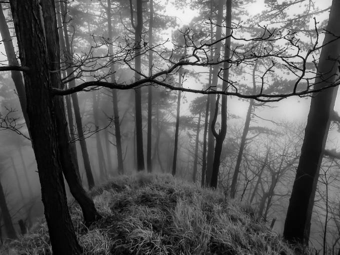 Fish Eye Without Fish Eye - B&W version by DISCOVERABRUZZO_dot_IT - Stillness Photo Contest