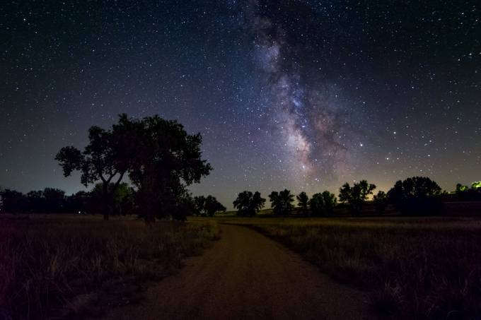Path beneath the Stars  by rickgleason - Silhouettes Of Trees Photo Contest