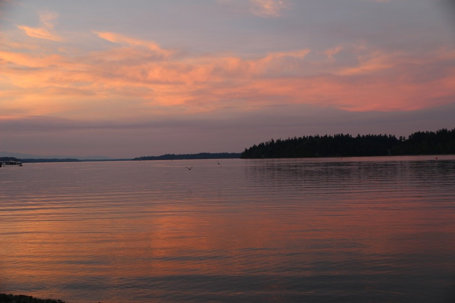 A late summer sunset photo taken at Percival Bay in Olympia, Washington.  This picture hopefully ...