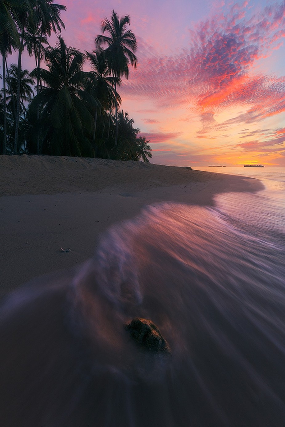 """Caribbean Colors"" by ericbennett - Palm Trees Photo Contest"