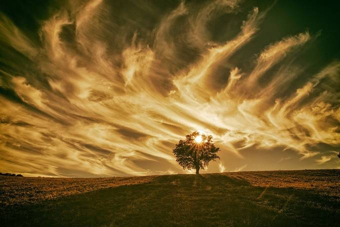 Monochrome by Ivan_Bertusi - Isolated Photo Contest