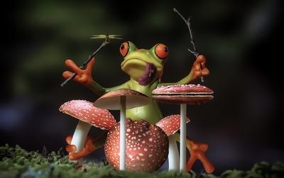 Froggy Shroom Jam