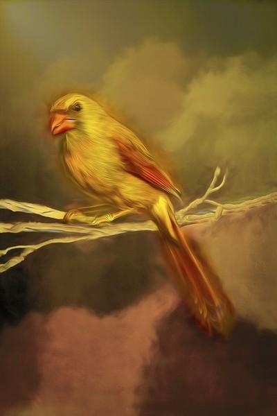 A Female Cardinal with Art