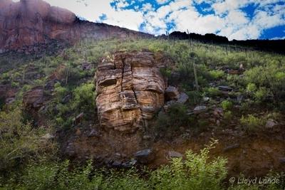 The Mask at Sabino Canyon