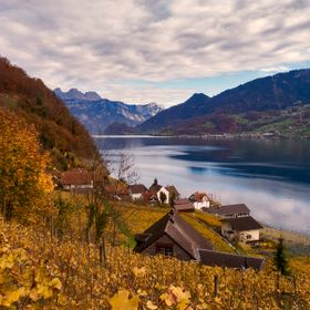 During an autumn hike, we went through a vineyard to Quinten on Lake Walen in Switzerland