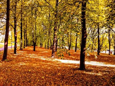 Autumn in Warsaw