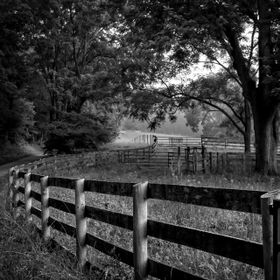 A local Lancaster County scene of a fence line along the edge of a winding country road