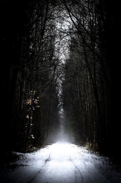 The Path