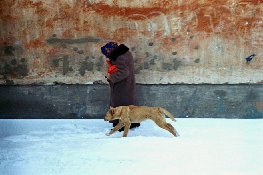 Camera: Zenit ET. Lens: Helios 44-2. Film: Kodak Color Plus 200.
