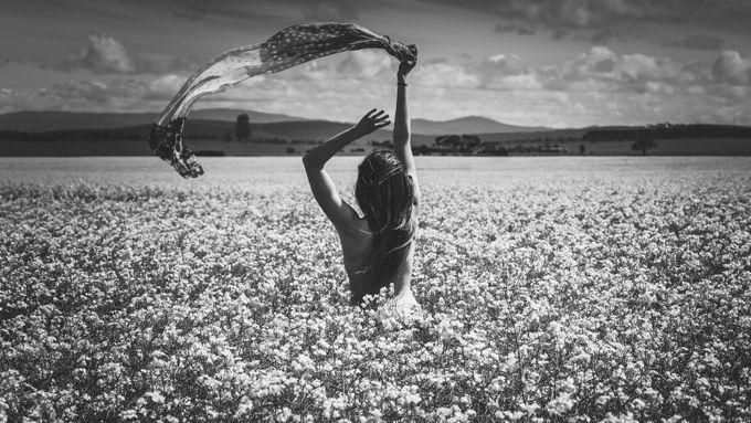 Be Free by susanzentay - Black And White Compositions Photo Contest vol2