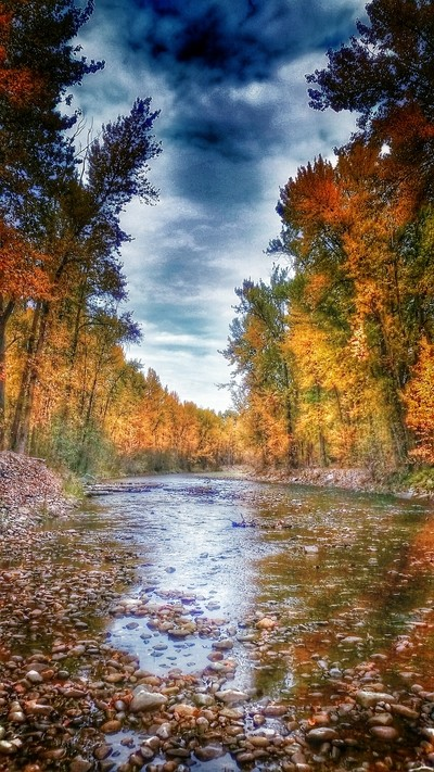 Fall in the River