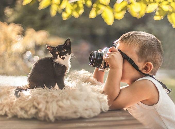 little man at work by agnieszkagulczynska - Kittens vs Puppies Photo Contest