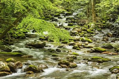 The Streams of the Smoky Mountainws