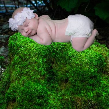Newborn photo shoot.