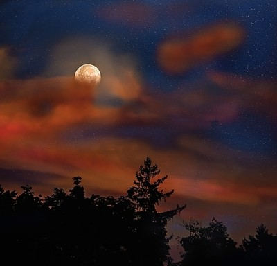 Harvest Moon - The Night before