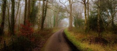 Killarney National Park Autumn-Fall