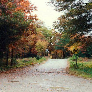 Fall near Toledo, OH