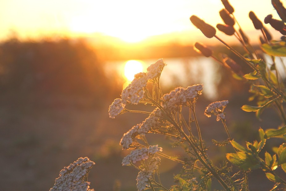 """at sunset"""