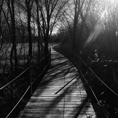 Lonely Walkways