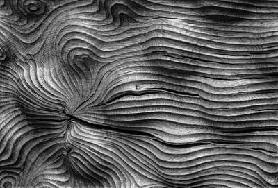 Timber waves