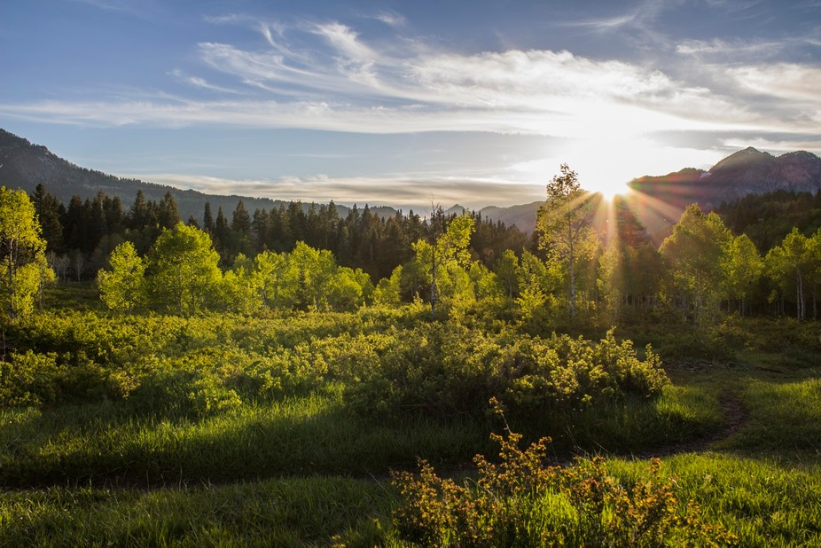 A buddy and I were out doing a camping trip and decided to go for a hike before the sun set. On o...