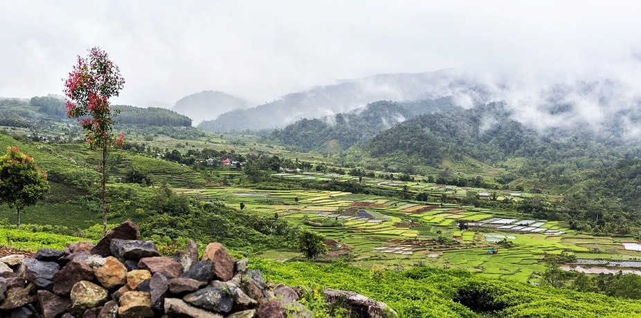 Alahan Panjang, West Sumatera