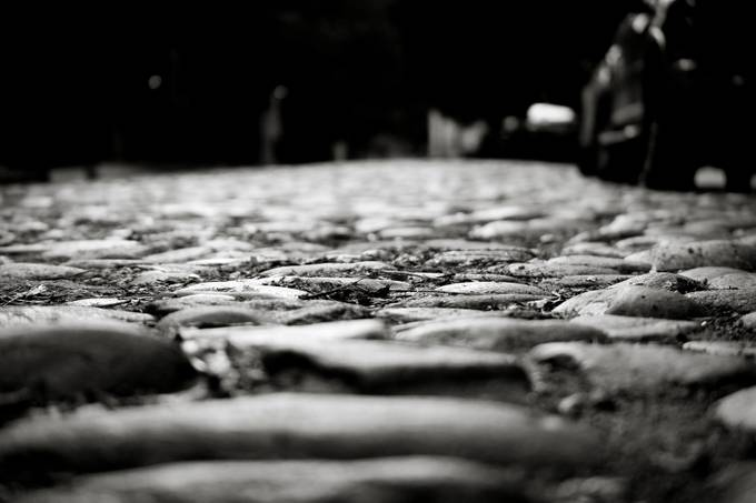 A cobble stone street in Charleston, SC.