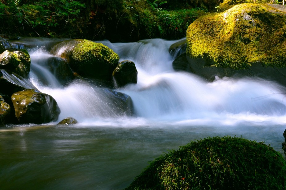 This was deep in the Olympic National Park in Washington State. I stumbled across this river whil...