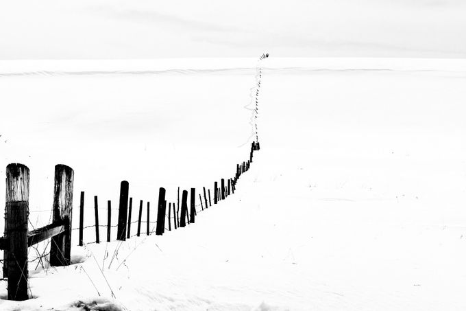 Fence in The Snow by Jinjinphoto - Fences Photo Contest