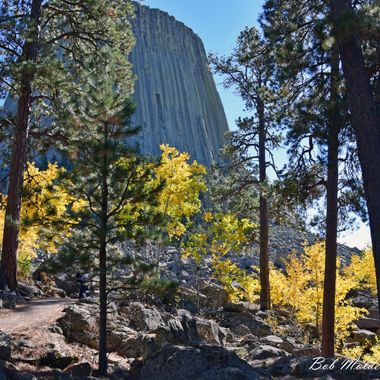 Fall colors at Devils Tower