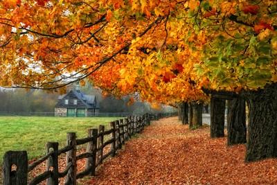 Nature.com, Qc, Canada door Theo-Herbots-Fotograaf