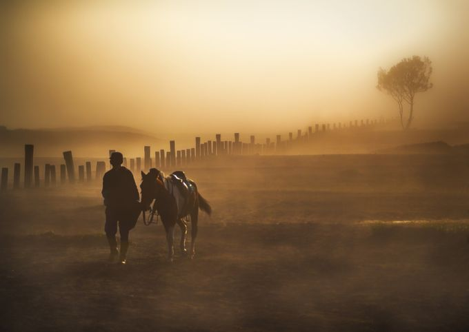 Horseman by TienSangKok - Mist And Drizzle Photo Contest